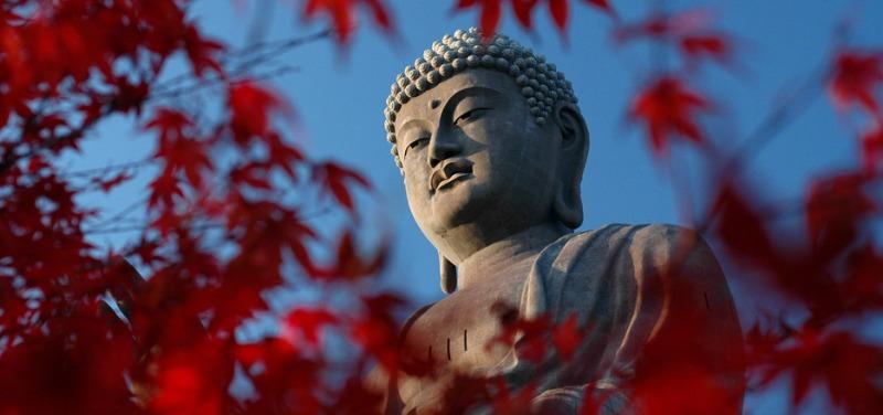JP-buddha-iStock-935x440